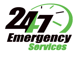 24 hour roadside assistance from e-car